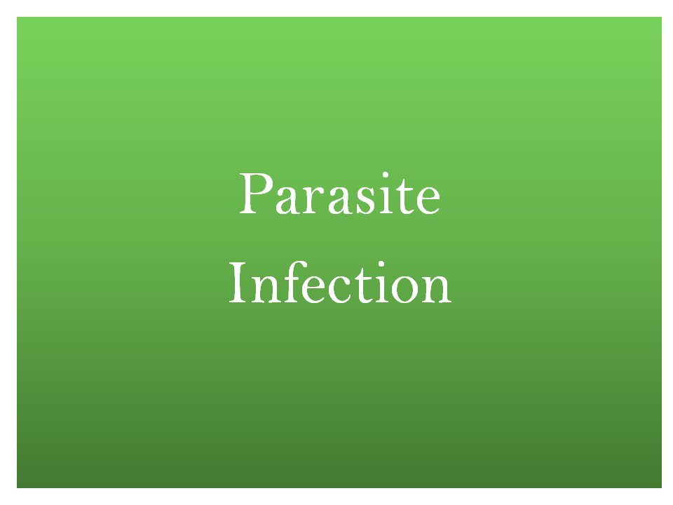 Parasite infection treatment